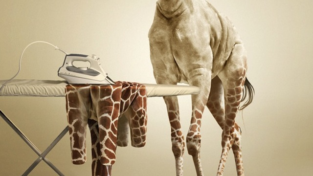 Undress a Giraffe tutorial for graphic designers with Photoshop